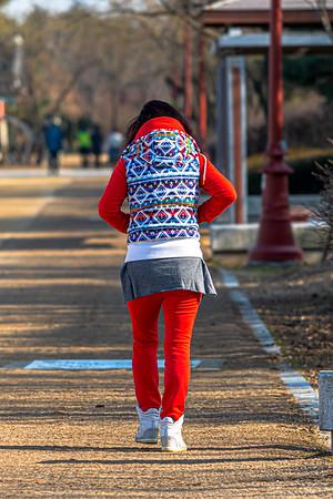 Songdo Winter Stroll