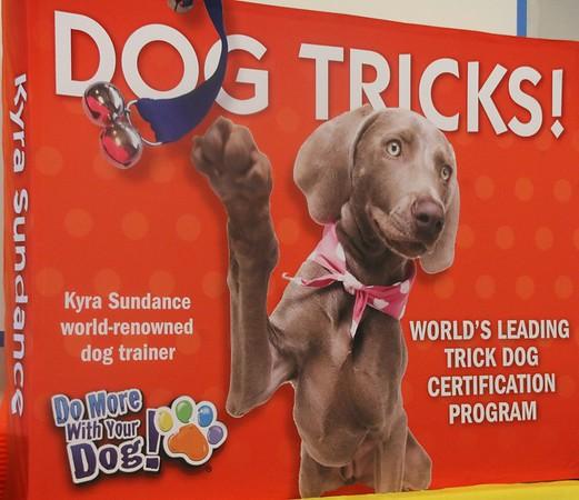 2016-08 Colorado Trick Dog Class with Kyra Sundance
