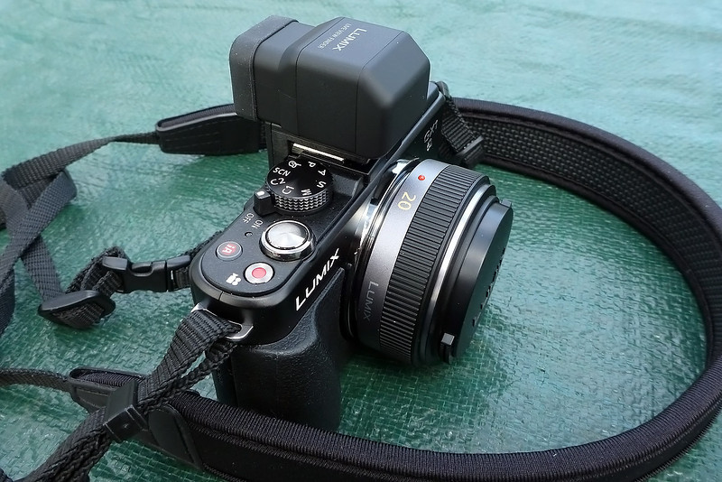 Panasonic GX1 with optional viewfinder.