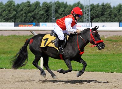 Ponnygalopp Jägersro 160814