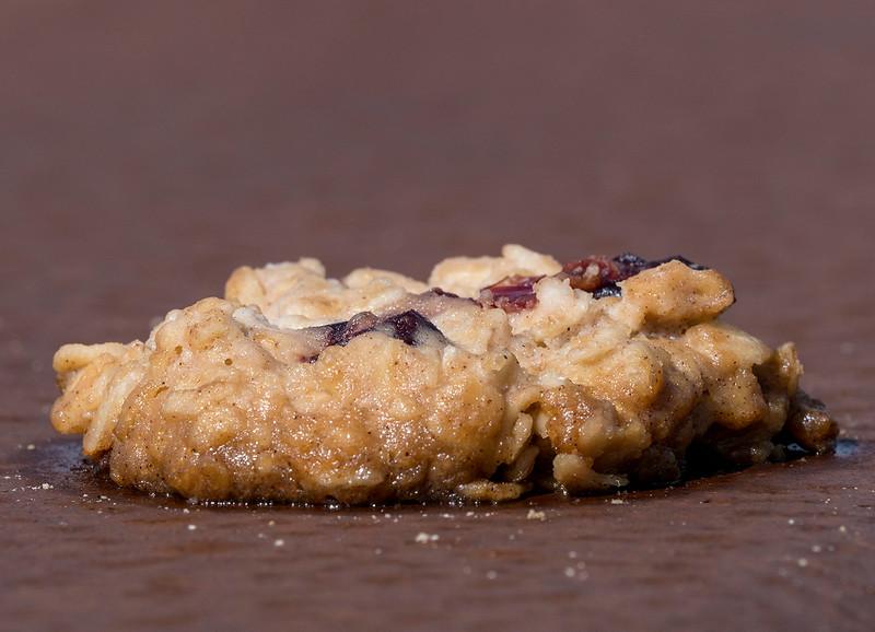 trail cookie.jpg