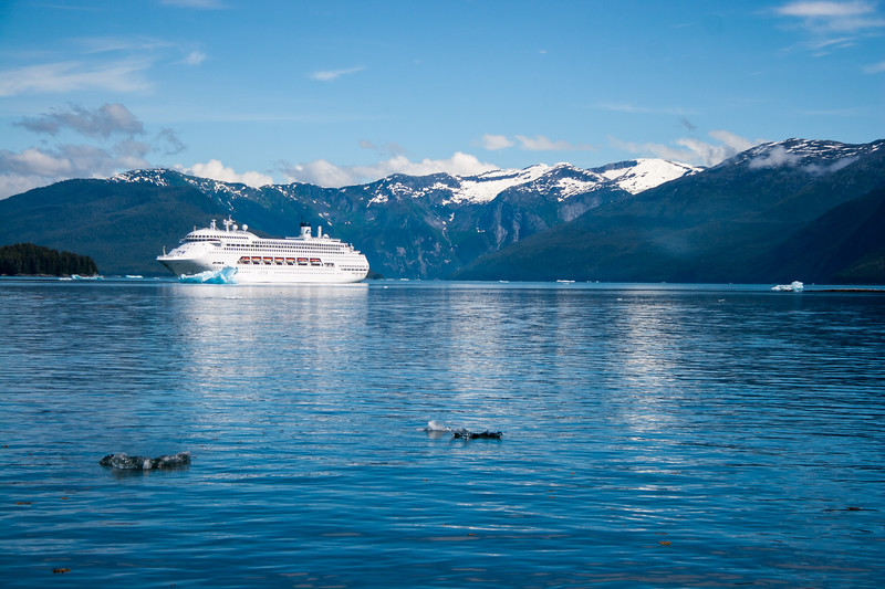 The Regal Princess at the entrance to Tracy arm