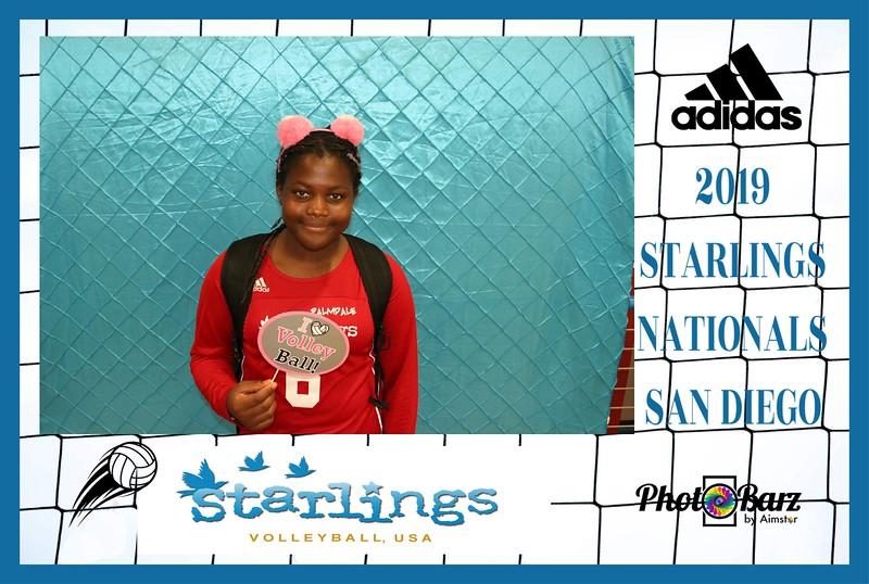 Starlings Volleyball (56).jpg