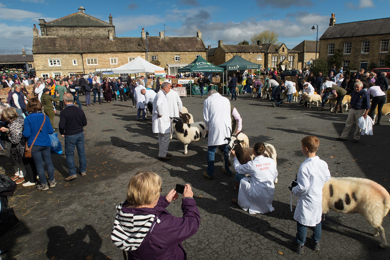 Masham Sheep Fair 2017
