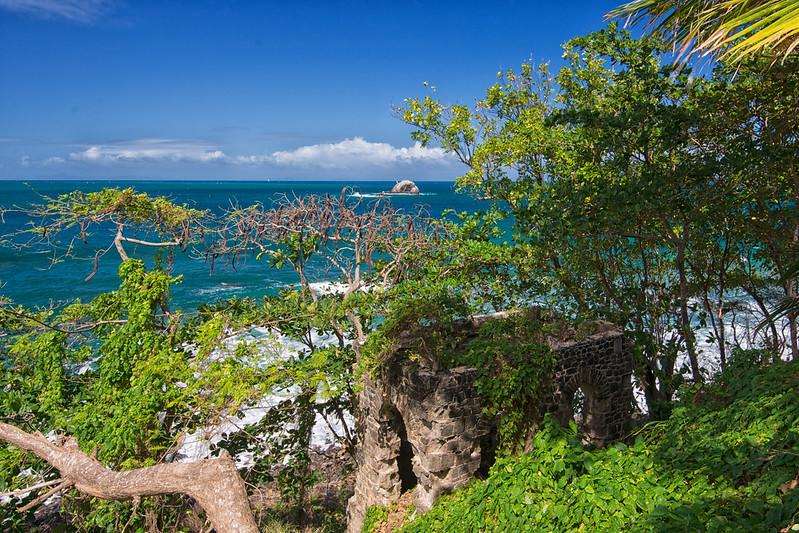Carribean-6.jpg
