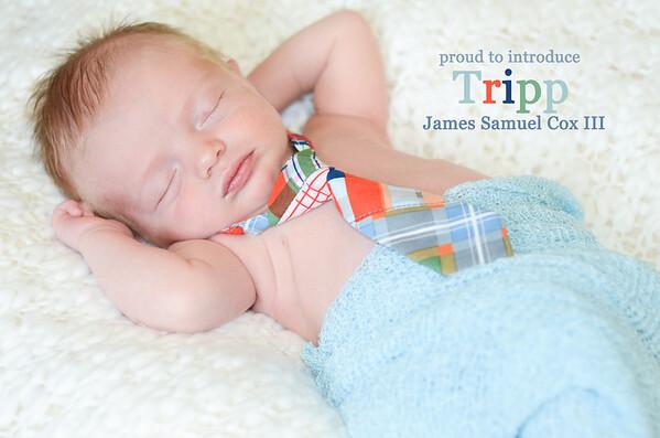 Baby Tripp