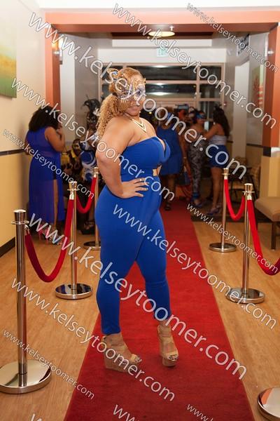 Lisa's Masquerade 30th Party