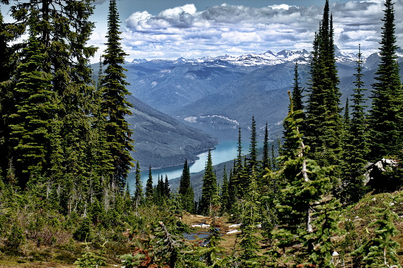 British Columbia, Mt Revelstoke Naional Park