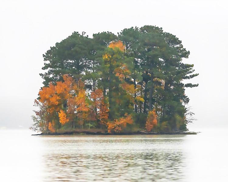 001 Island Fog in Autumn - 002 Lg.jpg