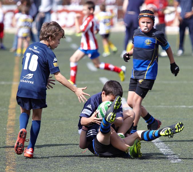 0265_12-Oct-13_TorneoPozuelo.jpg