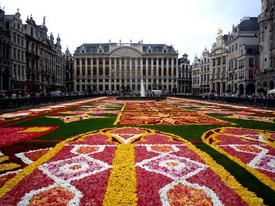 Flower Carpet - Brussels, Belgium - August 2010