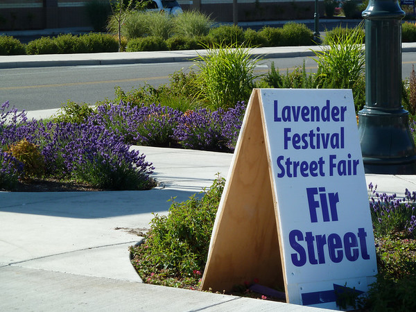 2010 07 Lavender Fest, Sequim,WA
