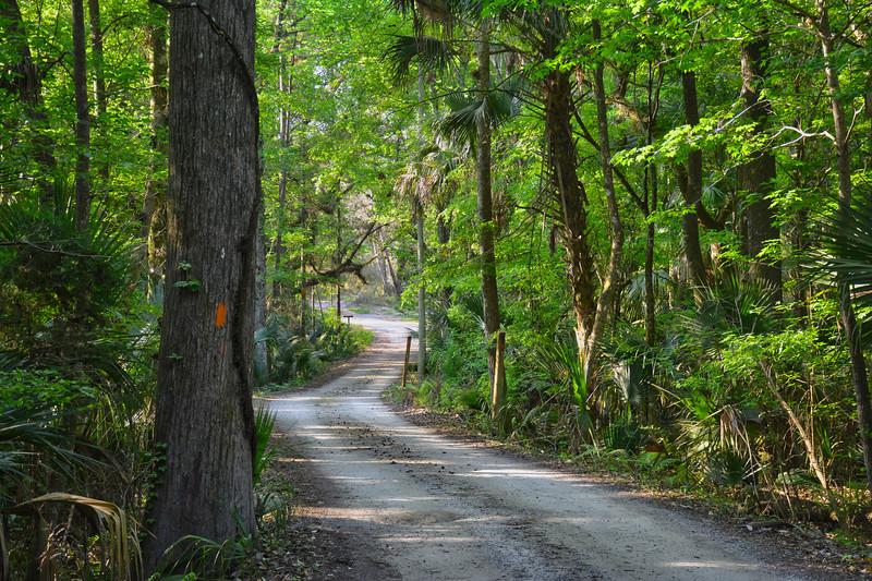 ORLANDO Palatka Road.jpg