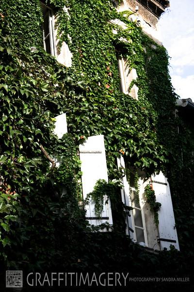 St Remy de Provence France Pegau  538.jpg