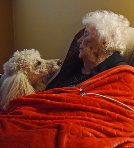 poodles-bring-cheer-to-east-texas-nursing-home-residents