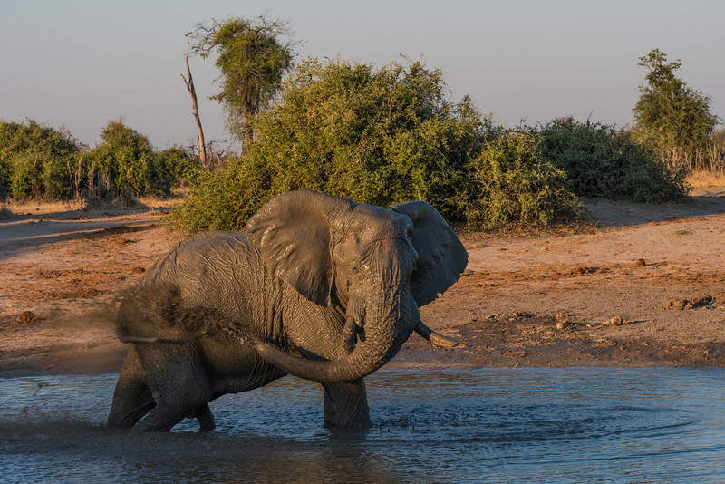 Botswana_June_2017 (4052 of 6179).jpg