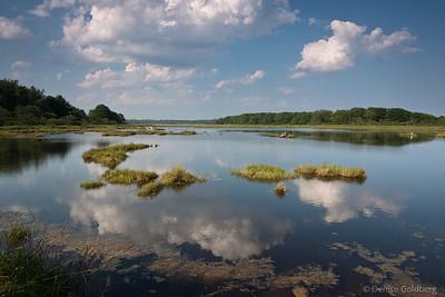 Wells Reserve - 2010