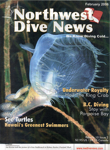 NW Dive News Feb 06.jpg
