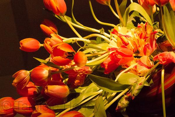 2014-3-21 Bouquets des Artes at DeYoung