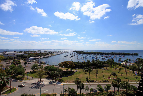 Yacht Harbor Sized for MLS