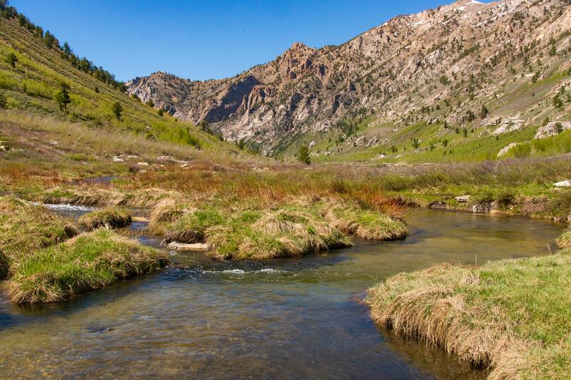 Lamoille Creek Flows Through the Ruby Mountains
