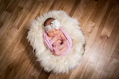 Gabriella New Born Feb 2018
