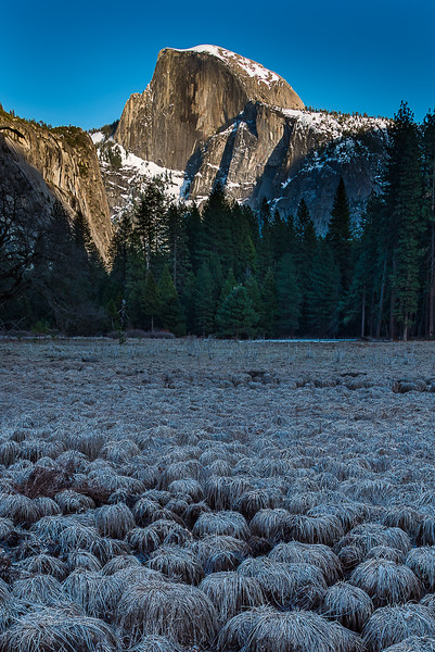 Half Dome from frozen Cooks Meadow