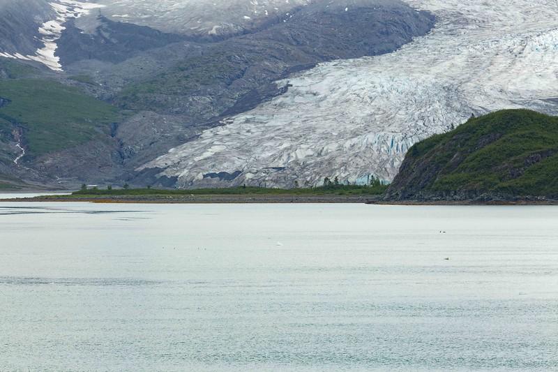 Glacier Bay 68.jpg