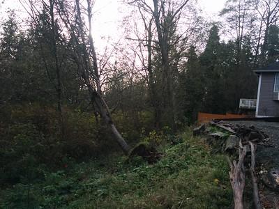 November storm damage