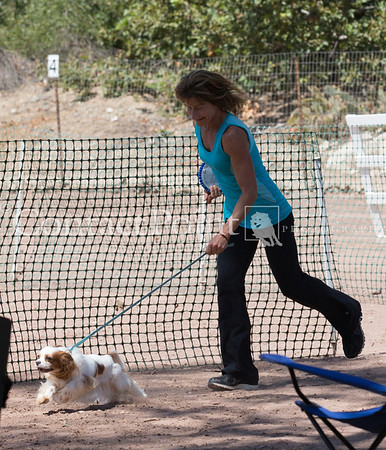 Contact Point AKC Agility - June 15, 2013