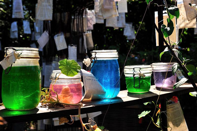 Festival des Jardins Chaumont DSC_2997.jpg