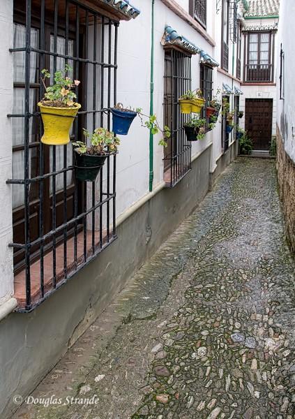 Mon 3/14 in Ronda:  Narrow walk with flower pots