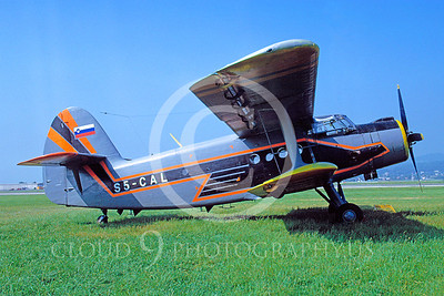 Antonov An-2 Colt Military Airplane Pictures