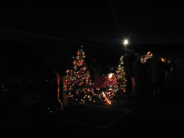 There were even Christmas trees!!