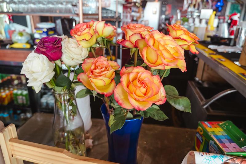 pretty roses2 (1 of 1).jpg