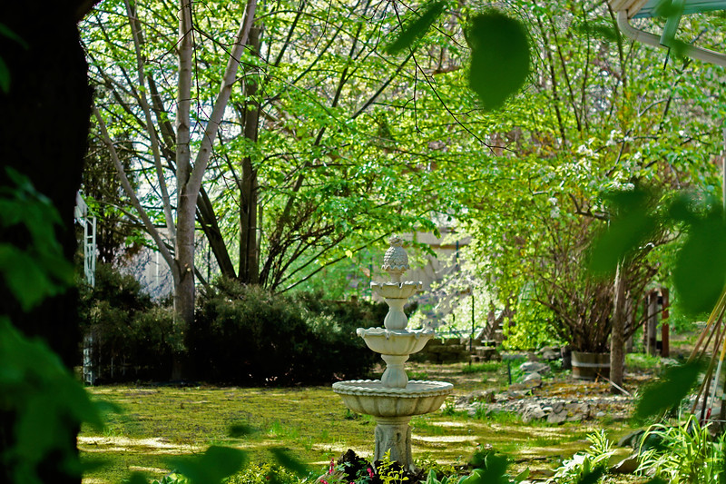 Fountain In The Garden