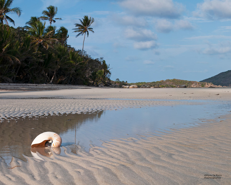 Chilli Beach, Cape York, QLD, Dec 2009.jpg