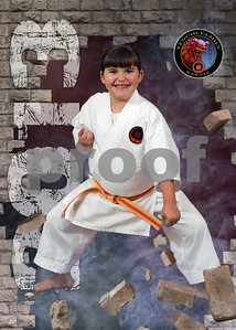 2013 - Tenchi Family Karate - Mickey Brock