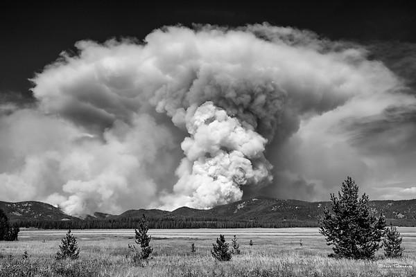 Halstead Fire (August 2012)