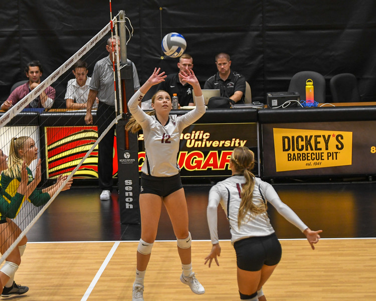 20180905 Volleyball-4471.jpg