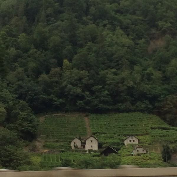 326_iPhone_Switzerland.jpg
