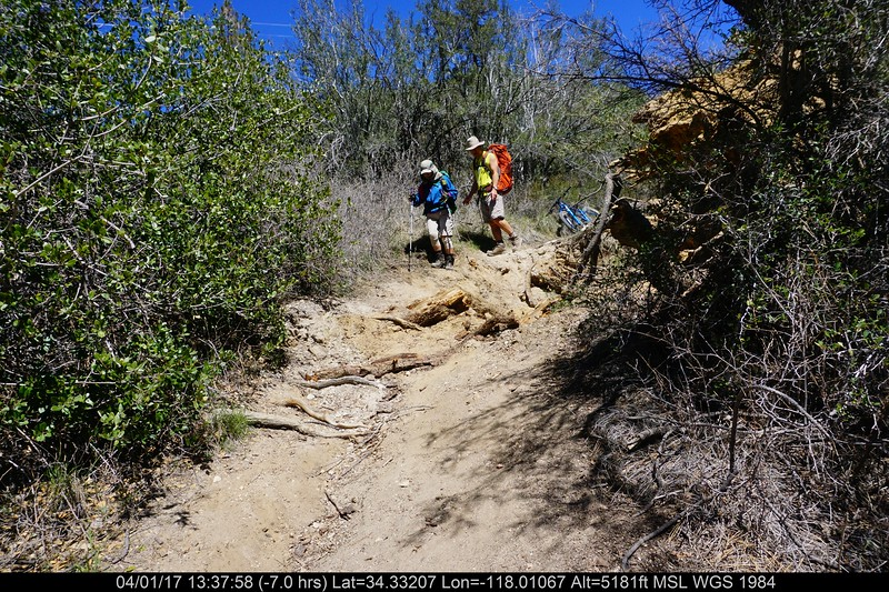20170401042-Chilao, Hillyer, Silver Moccasin Trailwork.JPG