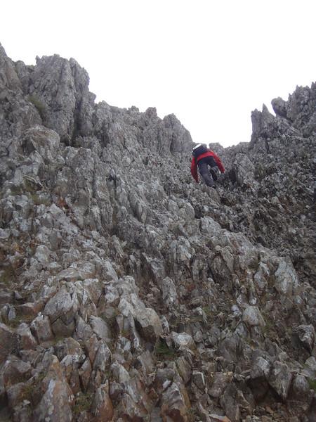 If a little steep