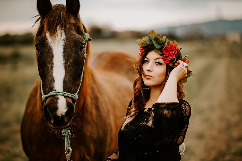 horsey-144.jpg