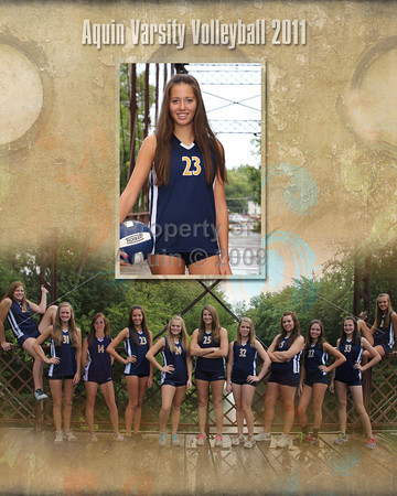 volleyball photomate composites . 4.4.12