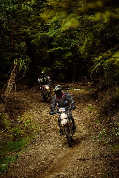 2019 KTM New Zealand Adventure Rallye (1333).jpg