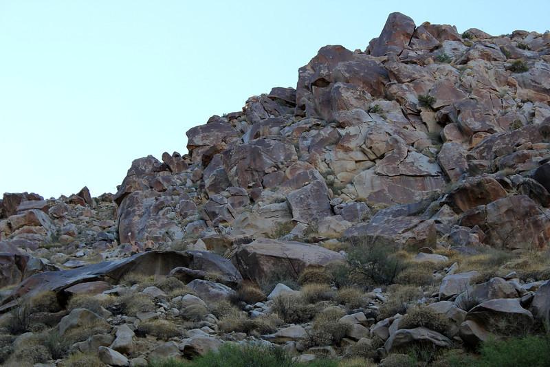 05 Cougar Canyon (162).JPG