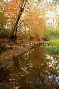 Banita Creek085 copy
