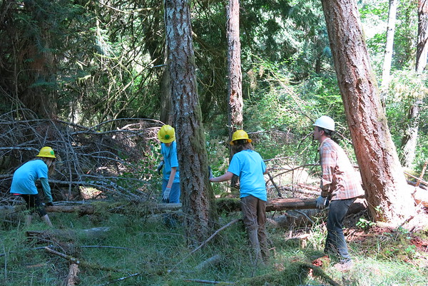 Orcas Youth Conservation Corps on Graham Preserve