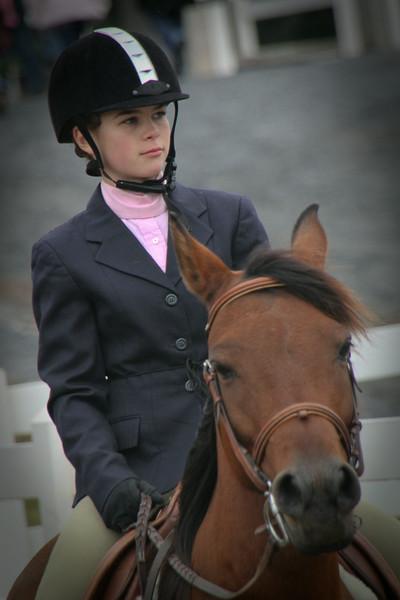HorseShow2-17.jpg